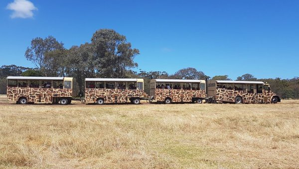Werribee Zoo Bus